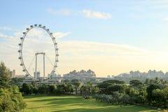 新加坡飞行物在早晨-最大的弗累斯大转轮在世界上 免版税图库摄影