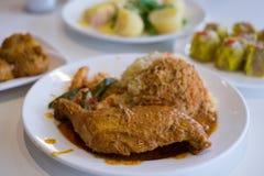 新加坡食物鸡咖喱饭 库存图片