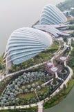 新加坡,新加坡-大约2015年9月:花圆顶、云彩森林和Supertree树丛,由海湾的庭院 库存照片