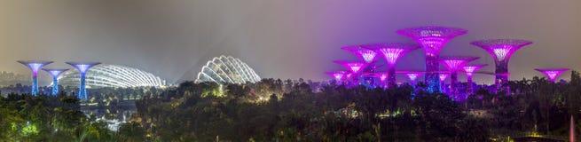 新加坡,新加坡-大约2015年9月:Supertree树丛和花圆顶全景在滨海湾公园 免版税库存照片