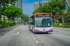 新加坡,新加坡- 2018年2月01日:公共汽车公共交通工具室外看法  被限制的SBS运输是a最大 库存照片
