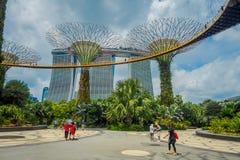 新加坡,新加坡- 2018年2月01日:走在supertree下的室外观点的未认出的人民在庭院  库存图片