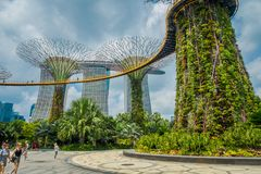 新加坡,新加坡- 2018年2月01日:走在supertree下的室外观点的未认出的人民在庭院  免版税库存图片