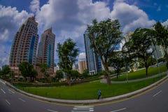 新加坡,新加坡- 1月30 2018年:走在有a的一个公园的美好的室外观点的未认出的人民 库存图片