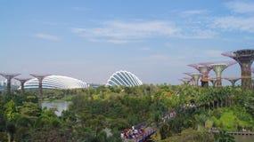 新加坡- 2015年4月2日, :Supertree树丛的天视图滨海湾公园的在新加坡 跨过101公顷 库存照片