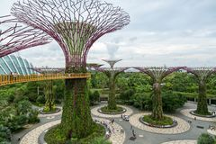 新加坡- 2016年1月19日:与现代纪念碑和绿色植物的都市场面 库存图片