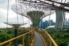 新加坡- 2016年1月19日:与现代纪念碑和绿色植物的都市场面 免版税库存图片