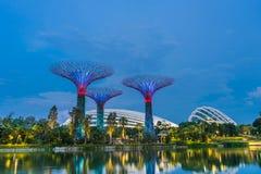 新加坡- 2017年11月19日:在滨海湾公园的日落时间 免版税库存照片