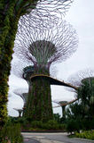 新加坡- 2016年7月23日, :Supertree树丛的天视图滨海湾公园的 跨过101公顷和五 免版税库存图片