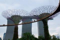 新加坡- 2016年7月23日, :Supertree树丛的天视图滨海湾公园的 跨过101公顷和五 库存照片