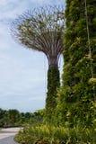 新加坡- 2016年7月23日, :Supertree树丛的天视图滨海湾公园的 跨过101公顷和五 库存图片