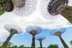 新加坡- 2017年2月14日:在滨海湾公园的Supertrees 免版税库存图片
