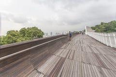 新加坡- 5月21,2016 :新加坡汉德尔逊在Moun的波浪桥梁 免版税库存照片