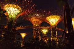 新加坡- 1月15 :Supertree树丛夜视图庭院的 库存图片