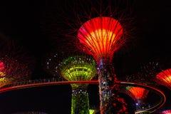 新加坡- 1月15 :Supertree树丛夜视图庭院的 图库摄影