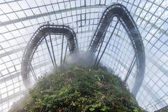 新加坡- 1月15 :Supertree树丛夜视图庭院的 免版税库存照片