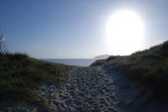 新南威尔斯海滩 免版税库存图片