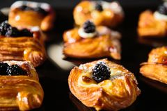 新卷甜漩涡小圆面包用黑莓 库存照片