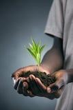 新发展计划 免版税库存图片