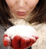 新吹的雪的妇女 免版税库存图片