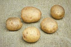 新土豆袋装 库存照片