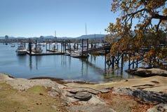 新堡海岛小游艇船坞,纳奈莫, BC 免版税库存图片