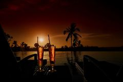 新夏天冷的酒精饮料异乎寻常的鸡尾酒 图库摄影
