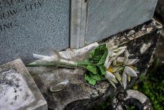 新奥尔良拉斐特公墓打破的花瓶 免版税库存图片