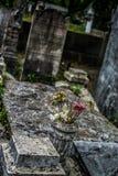 新奥尔良拉斐特公墓 图库摄影