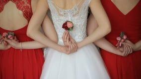 新娘和两个女傧相的背面图举行桃红色玫瑰的可爱的钮扣眼上插的花红色礼服的 没有表面 婚姻 影视素材