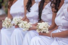 新娘和女傧相 免版税图库摄影