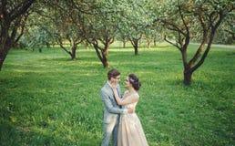 新娘和拥抱在公园的新郎 库存图片