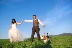 新娘和新郎与狗 免版税图库摄影
