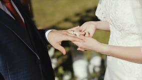 新娘和新郎交换婚戒反对花构成背景  新郎在投入圆环 影视素材