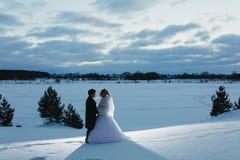 新娘和新郎和冬天lanscape 库存图片