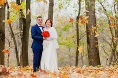 新娘和新郎和落秋叶 库存照片