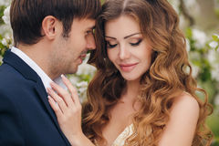 新娘和新郎在一个豪华的公园在春天 库存照片