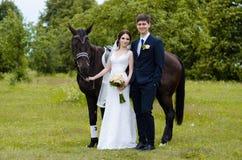新娘和新郎在公园站立在马附近,婚姻步行 白色礼服,愉快的加上动物 绿色背景 免版税库存图片