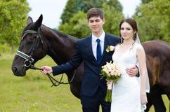 新娘和新郎在公园站立在马附近,婚姻步行 白色礼服,愉快的加上动物 绿色背景 免版税库存照片