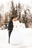 新娘和新郎在冬天 图库摄影