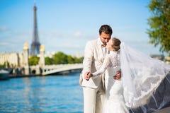 新娘和新郎在塞纳河堤防在巴黎 免版税库存照片
