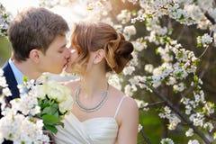 新娘和新郎在婚礼亲吻在春天步行停放 免版税库存图片