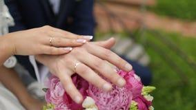 新娘和新郎在婚礼,藏品手 股票录像