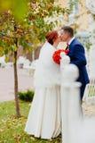 新娘和新郎在秋天公园亲吻 库存图片