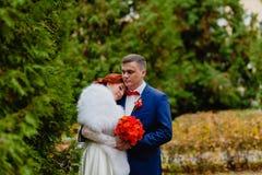新娘和新郎在秋天公园 库存图片