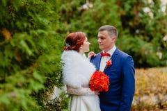 新娘和新郎在秋天公园 图库摄影