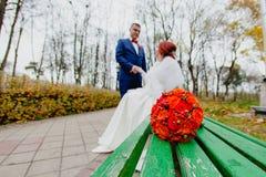 新娘和新郎在秋天公园 免版税库存图片