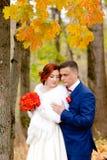 新娘和新郎在美好的秋天背景环境美化 免版税库存图片