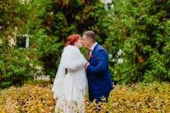 新娘和新郎在美好的秋天背景环境美化 库存图片