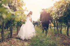 新娘和新郎在葡萄树 库存图片